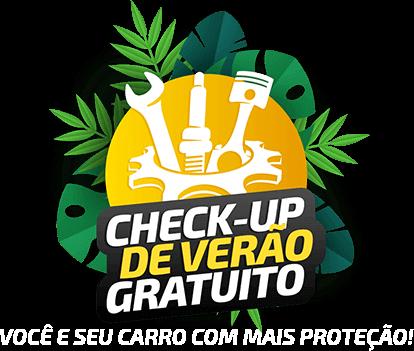 1.CHECKUP DE VERÃO